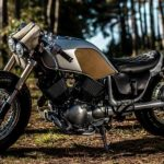 Yamaha Virago 535 Bull Dog (Old Empire Motorcycles) 3