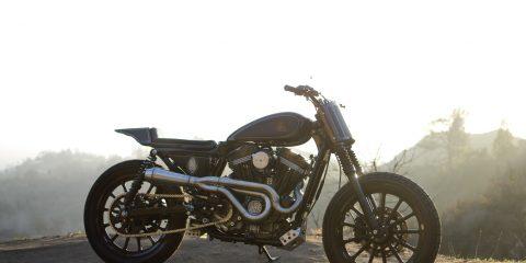 Harley Davidson 883 Monkee #65 (Wrenchmonkees) 28